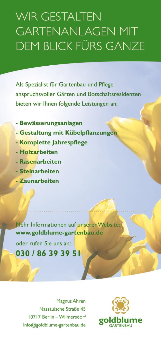 goldblume_fruehling